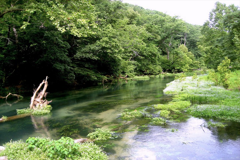 Rainbow Springs Missouri Trout Fishing
