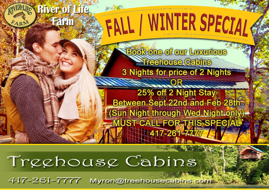 Treehouse Cabin Fall Winter Special