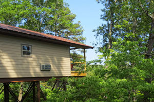 Treehouse cabins King Fisher Cabin