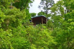 Rio Vista Treehouse Cabin