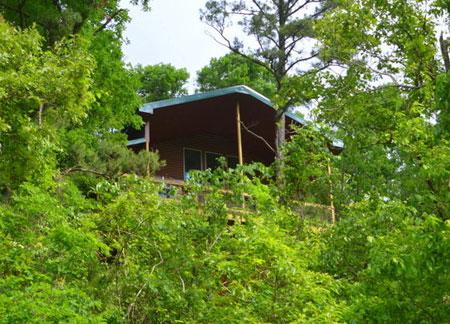 Rio Vista Treehouse Cabin Missouri Family Vacation